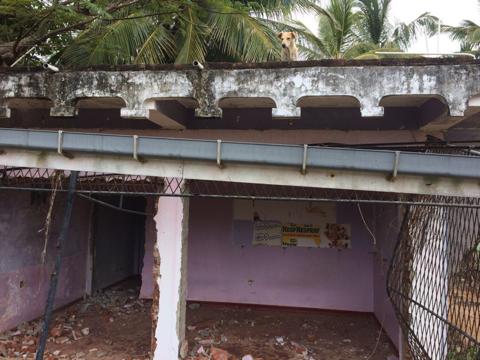 НЕ востановенная разруха после цунами фото