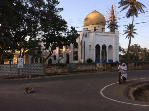 Мечеть в Хамбантоте фото