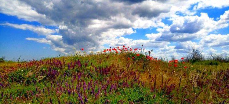 Почему и как образуются облака и их виды. Что такое морось. Учебник Windy.app
